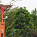 GBET-custom-solar-street-light-project2
